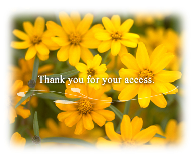 Thank you for your access.